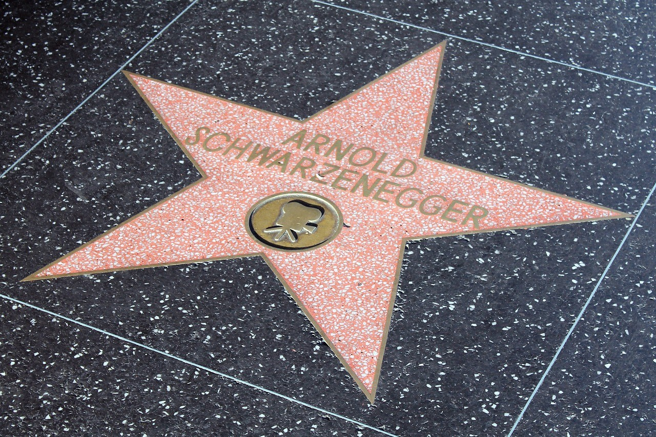 Arnold Schwarzenegger Stay hungry principle hollywood