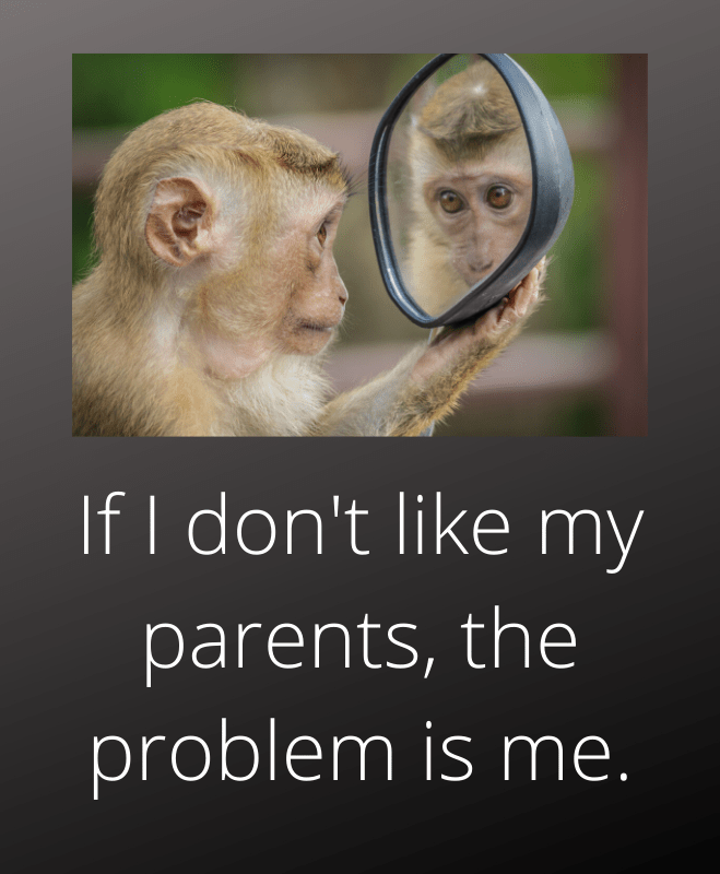If I don't like my parents the problem is me