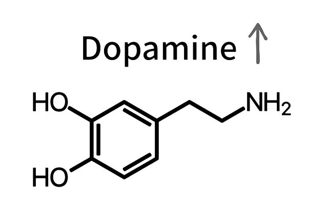 Dopamine goes up - No PMO for 7 Years - Totally Possible!